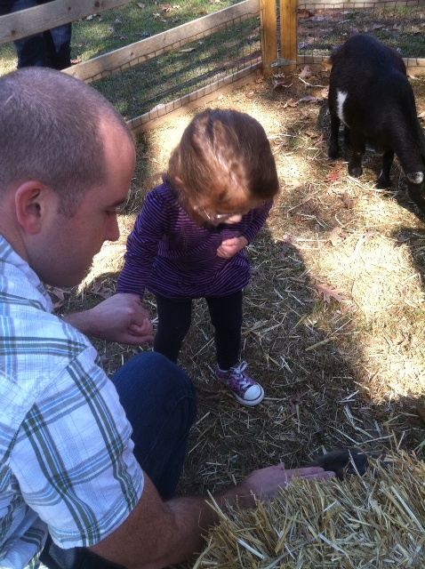 Little girl and her daddy at the petting zoo